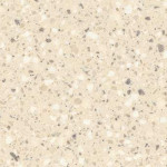 Corian Fossil C Solid Surface Countertops Vancouver